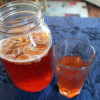 Homemade Kombucha 101