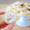 Tea Cookie Recipes With Icing