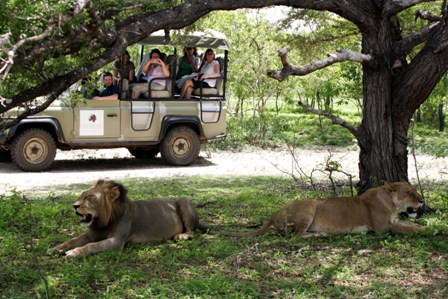 Safari and Beach Breaks in Tanzania and Zanzibar