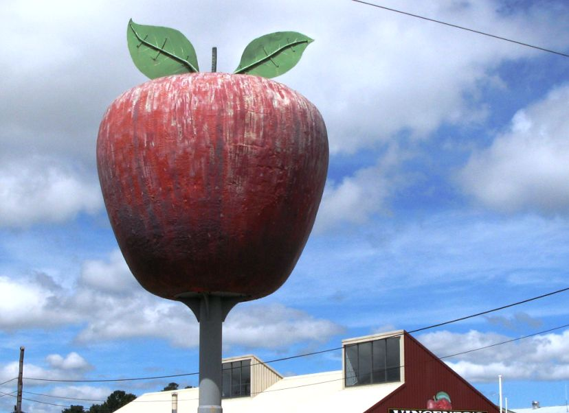 essay on apple fruit in marathi
