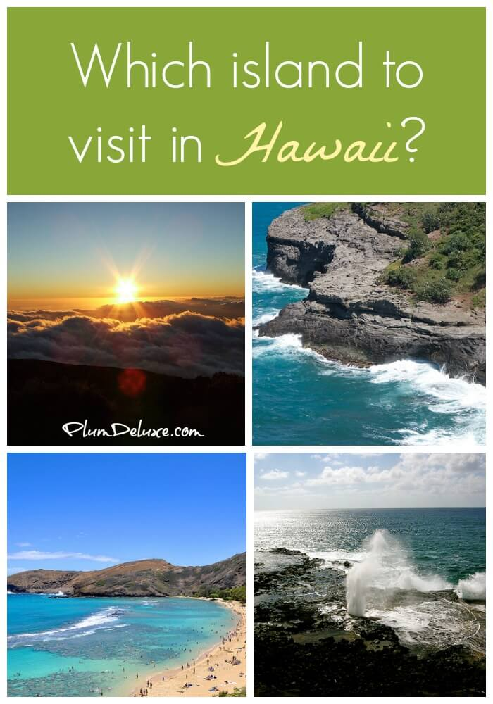 a report from a visit to hawaii From understanding the weather report to reading menus, you'll need the below  vocabulary it includes traditional hawaiian words as well as.