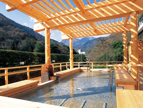 hakone onsen 7 of the Most Remarkable Onsens in Japan