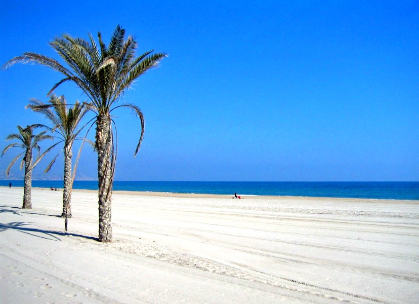 Photo essay 16 of the best city urban beaches - Nice things valencia ...