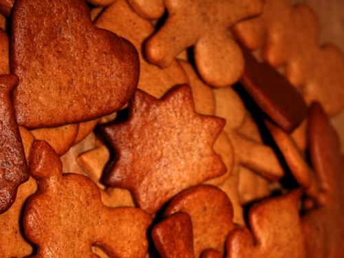 """gingerbread """"I've Never Met a Holiday Comfort Food I Didn't Like."""""""