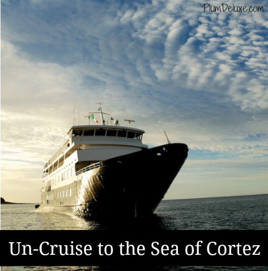1 cortez cover Un Cruise to the Sea of Cortez