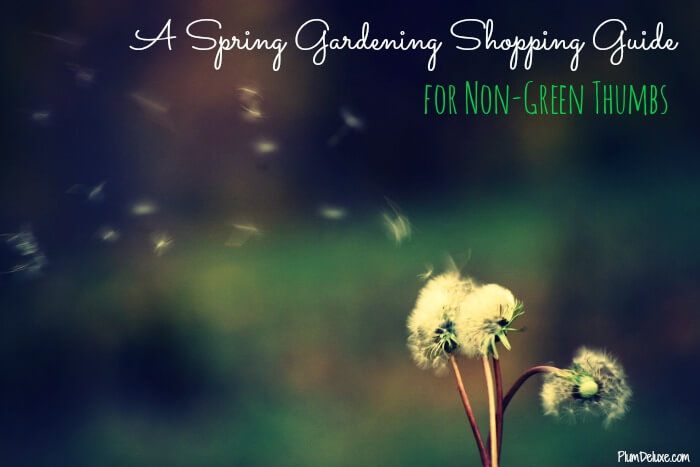 spring gardening shopping guide