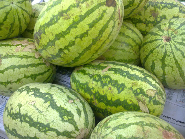 WatermelonRind