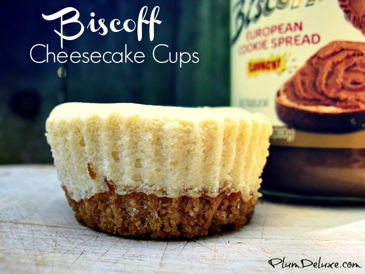biscoff cheesecake cups