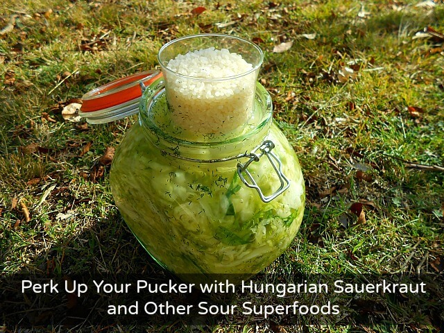 Sour foods cover Perk Up Your Pucker with Hungarian Sauerkraut and Other Sour Superfoods