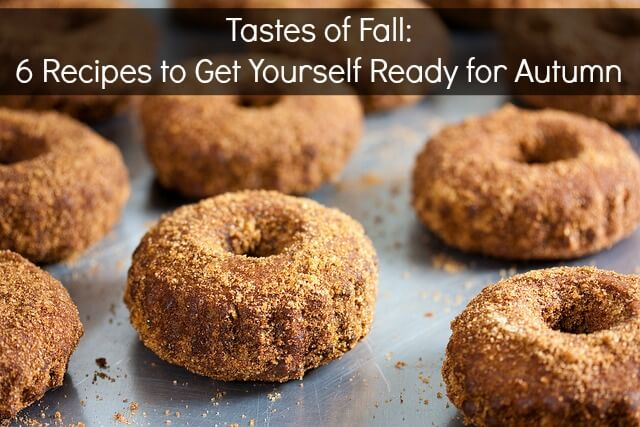 Fall Recipes Cover
