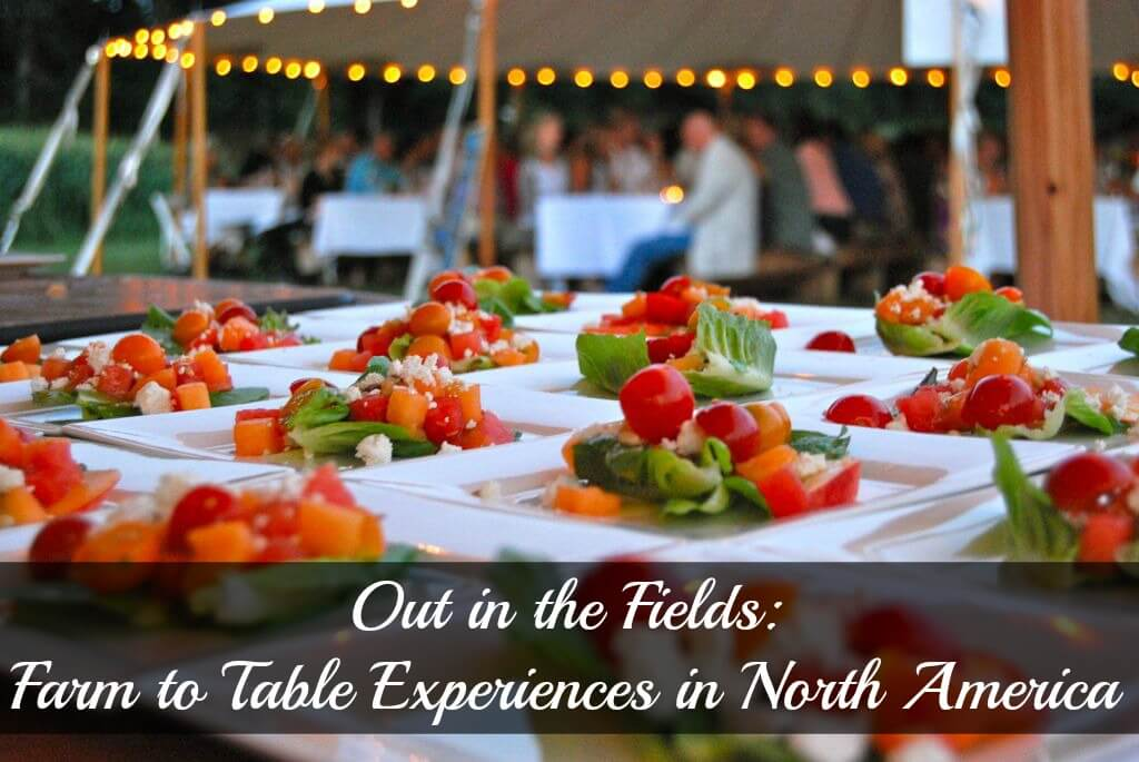 Farm to Table cover