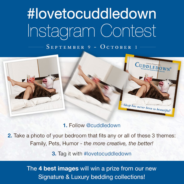 cuddledown contest