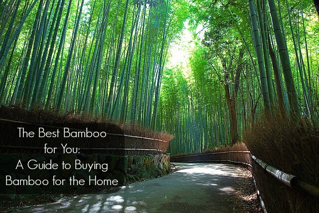 bamboo for home cover