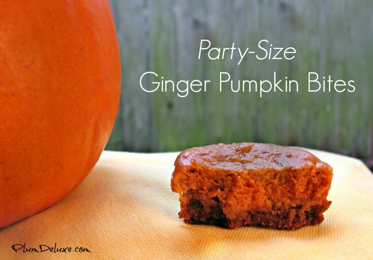 party sized ginger pumpkin bites recipe