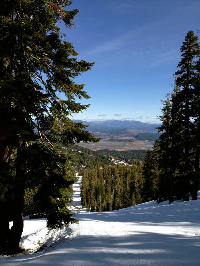 Northstar view