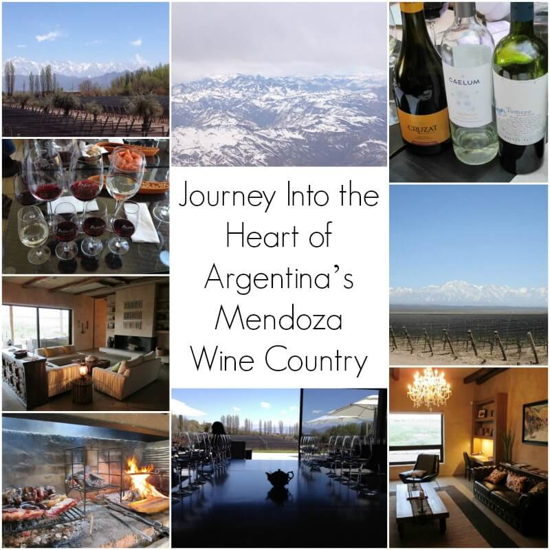 Mednoza Cover Journey Into the Heart of Argentina's Mendoza Wine Country
