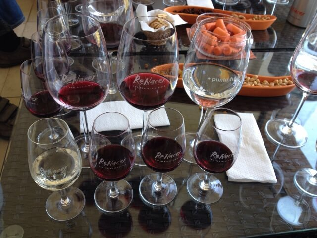 Tasting at Renacer 640x480 Journey Into the Heart of Argentina's Mendoza Wine Country