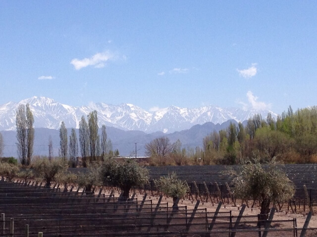 View at MUN Casarena 640x480 Journey Into the Heart of Argentina's Mendoza Wine Country