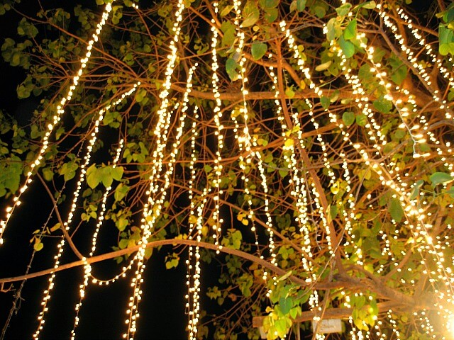 10 non tacky ways to decorate with christmas lights year round for How to hang string lights on trees