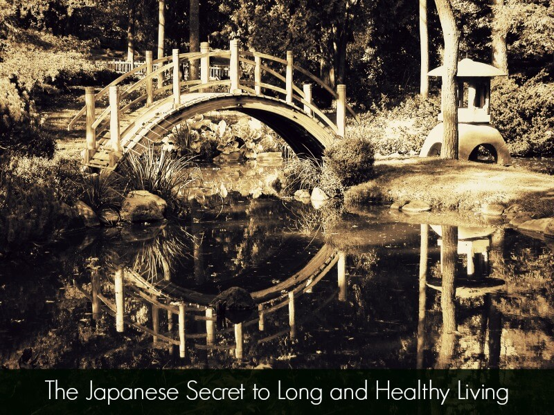 japanese secret to healthy living