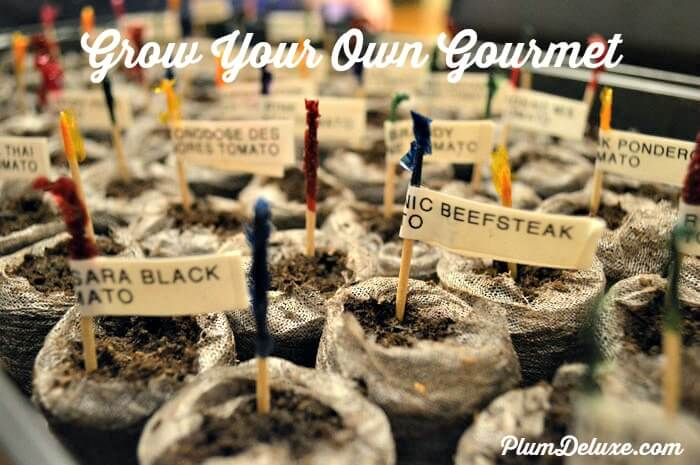 Grow Your Own Gourmet