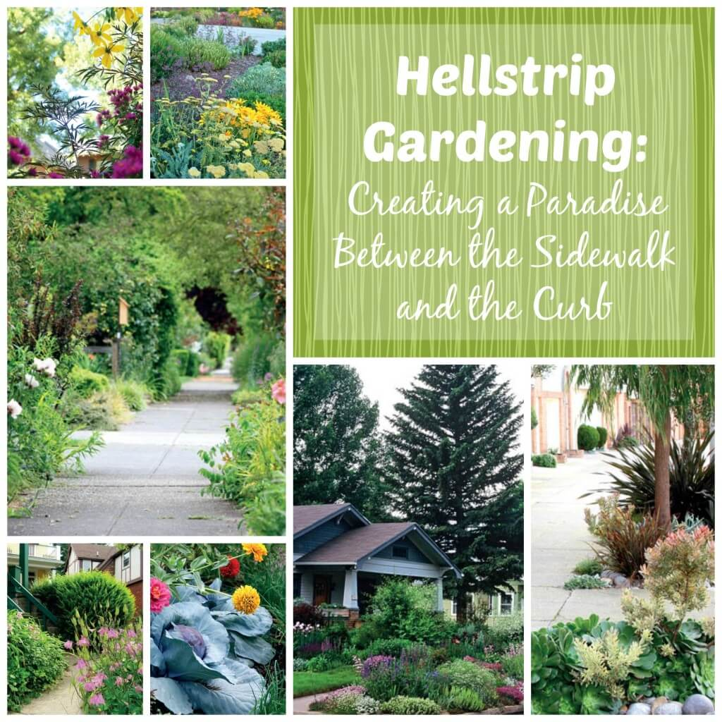 Hellstrip Gardening Creating A Paradise Between The Sidewalk And The Curb