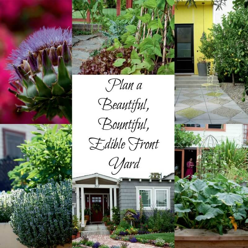 Plan A Beautiful Bountiful Edible Front Yard