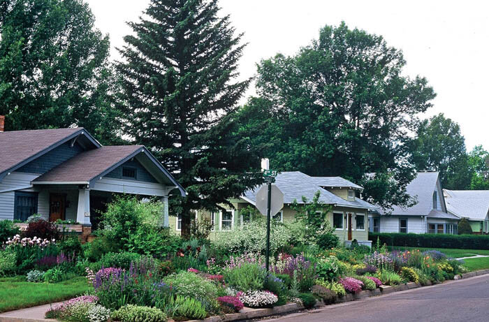 Beautiful Hellstrip Gardening: Creating A Paradise Between The Sidewalk And The Curb