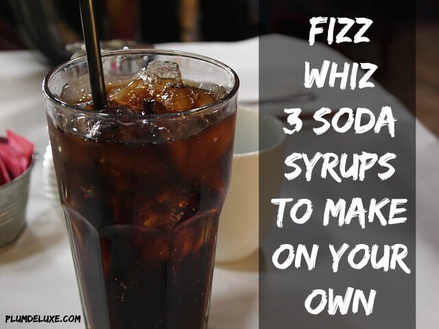 Fizz Whiz 3 Soda Syrups to Make on Your Own