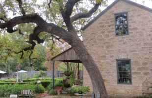 Wine and Dine in Texas Hill Country: A Weekend Getaway in Fredericksburg