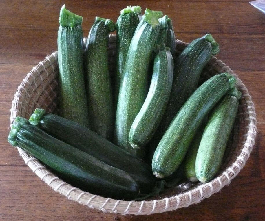 Making a Meal of Zucchini Madness