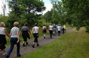 The Road Less Traveled: Why Walking Parties Should Be the New Social Craze