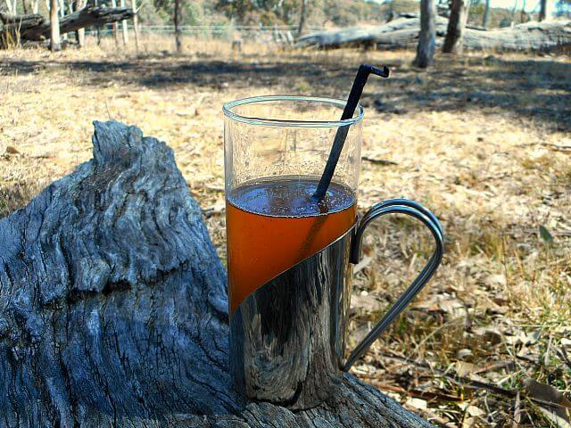Warm Fall Flavor: Mulled Apple Wine with Vanilla