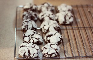 crunchy cocoa cookies