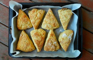 Cheese Spreads and Savory Scones for a Warm Autumn Teatime