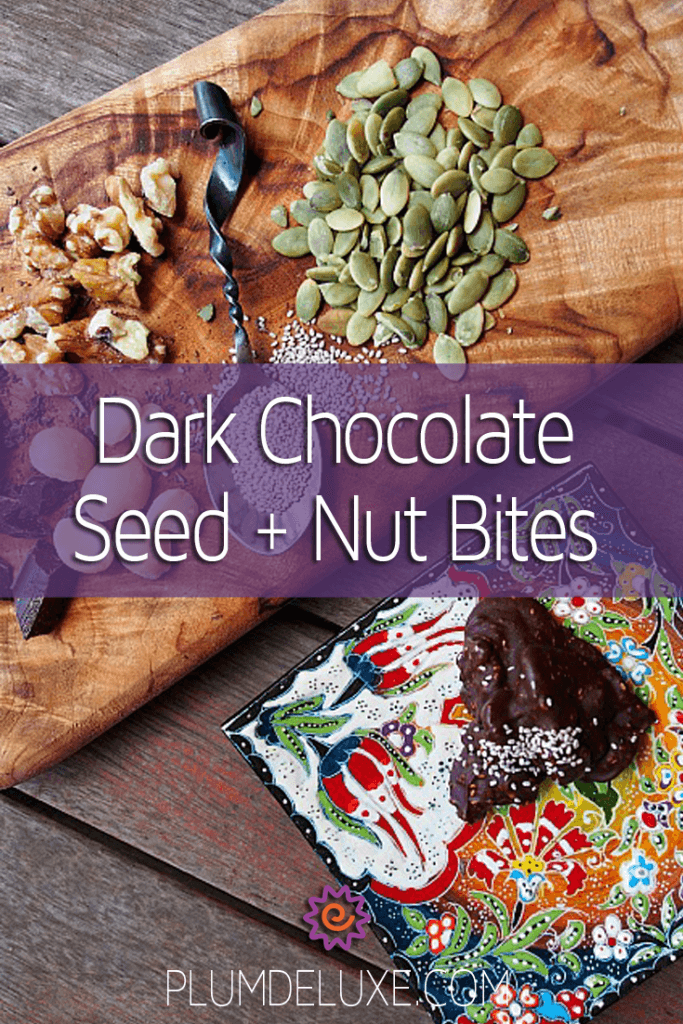Dark Chocolate Seed + Nut Bites