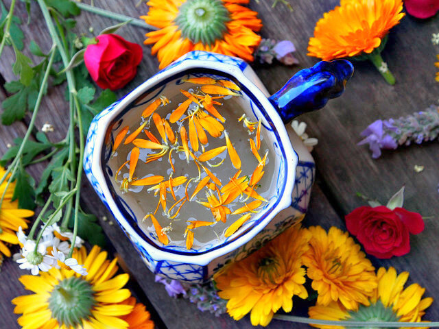 Overhead view of calendula flower petals floating in a blue and white teacup, surrounded by scattered yellow, orange, and red flowers.