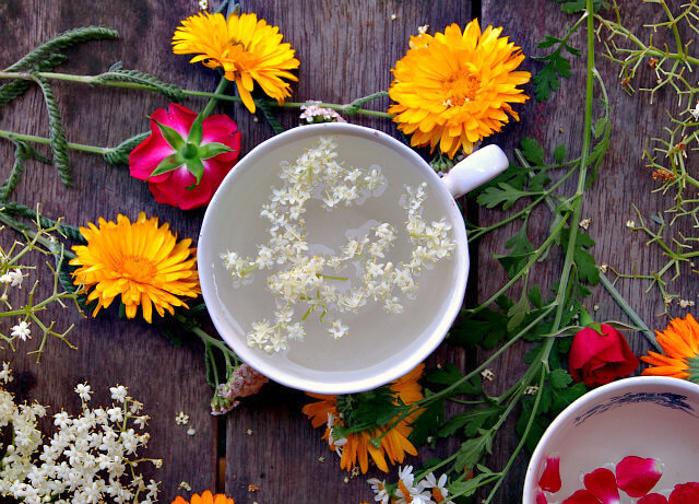 Elderflowers float in a white teacup, surrounded by red, orange, and white flowers.
