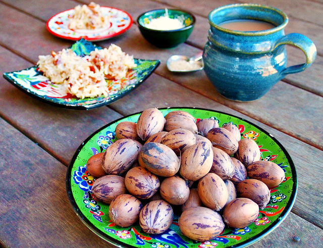 A green plate full of pecans sits on a wooden table in front of a mug of tea and a plate of coconut praline pecans.