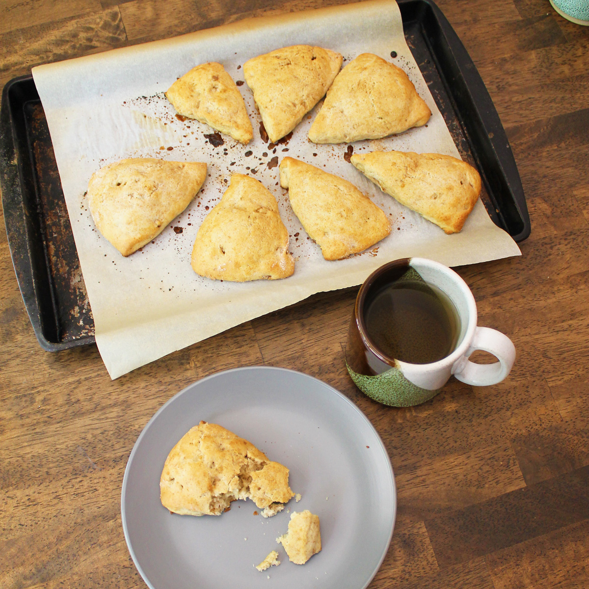 Overhead view of a tray of seven maple walnut scones on a baking tray next to an earthenware mug of tea and an eighth scone on a gray plate. The scone has a bite out of it.
