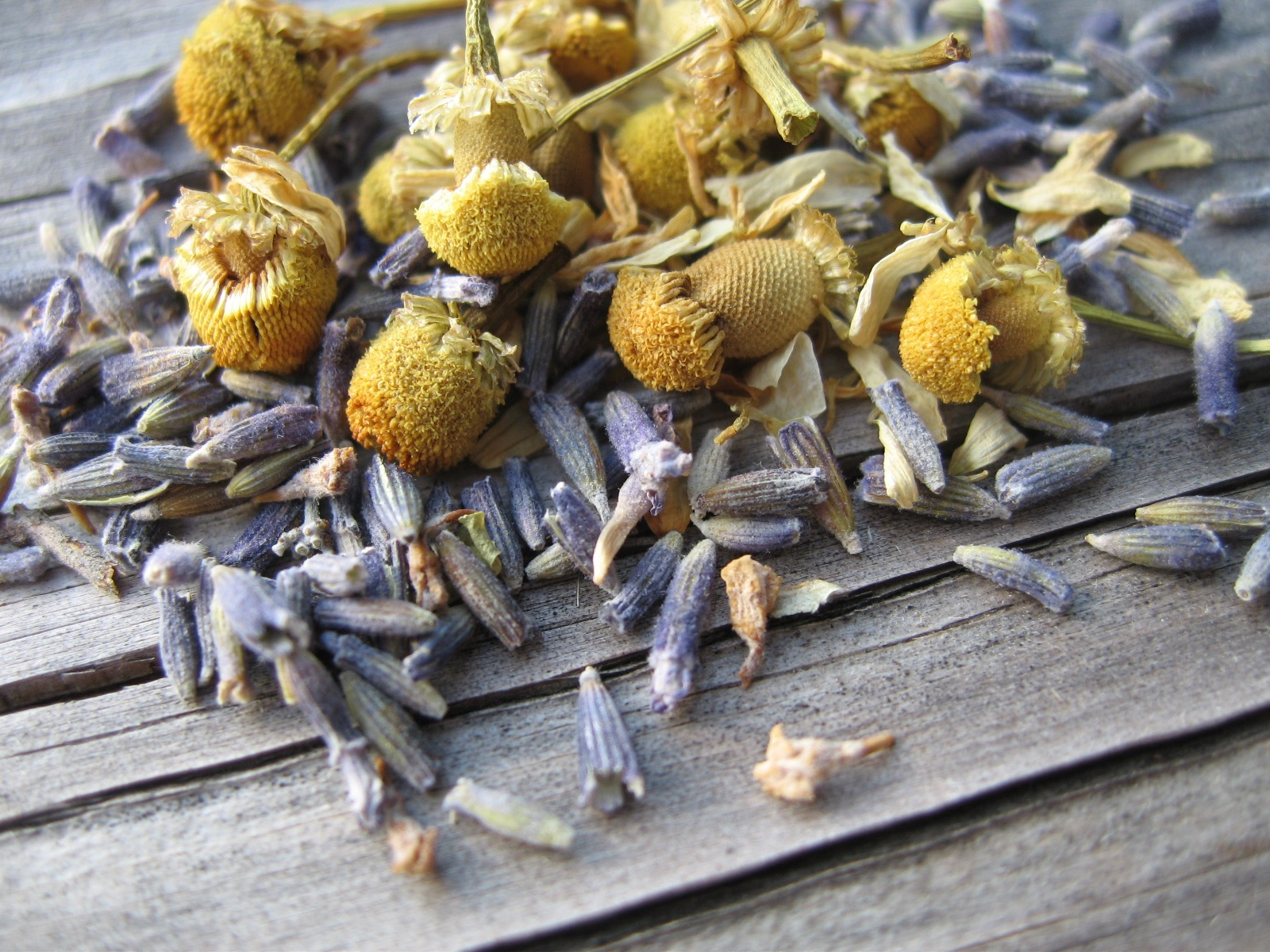Closeup of lavender and chamomile buds on a rough wooden table.