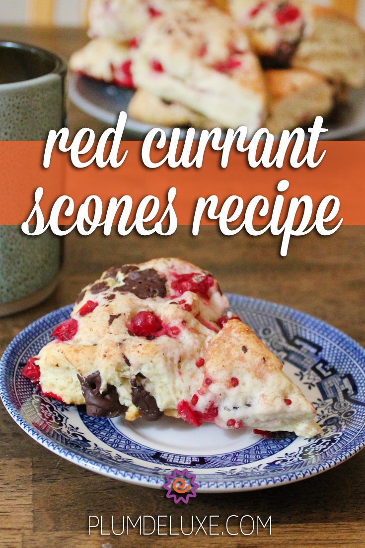 A dark chocolate red currant scone sits on a blue and white plate in front of a mug of tea and a plate piled with scones. The overlay text reads: red currant scones recipe.