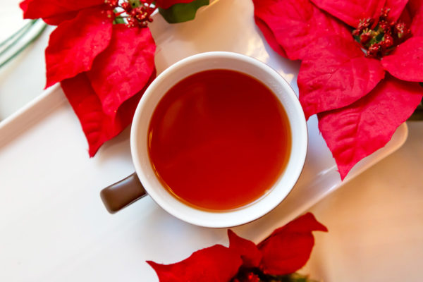 Overhead view of a mug of mulled apple cider surrounded by red poinsettias on a while table.