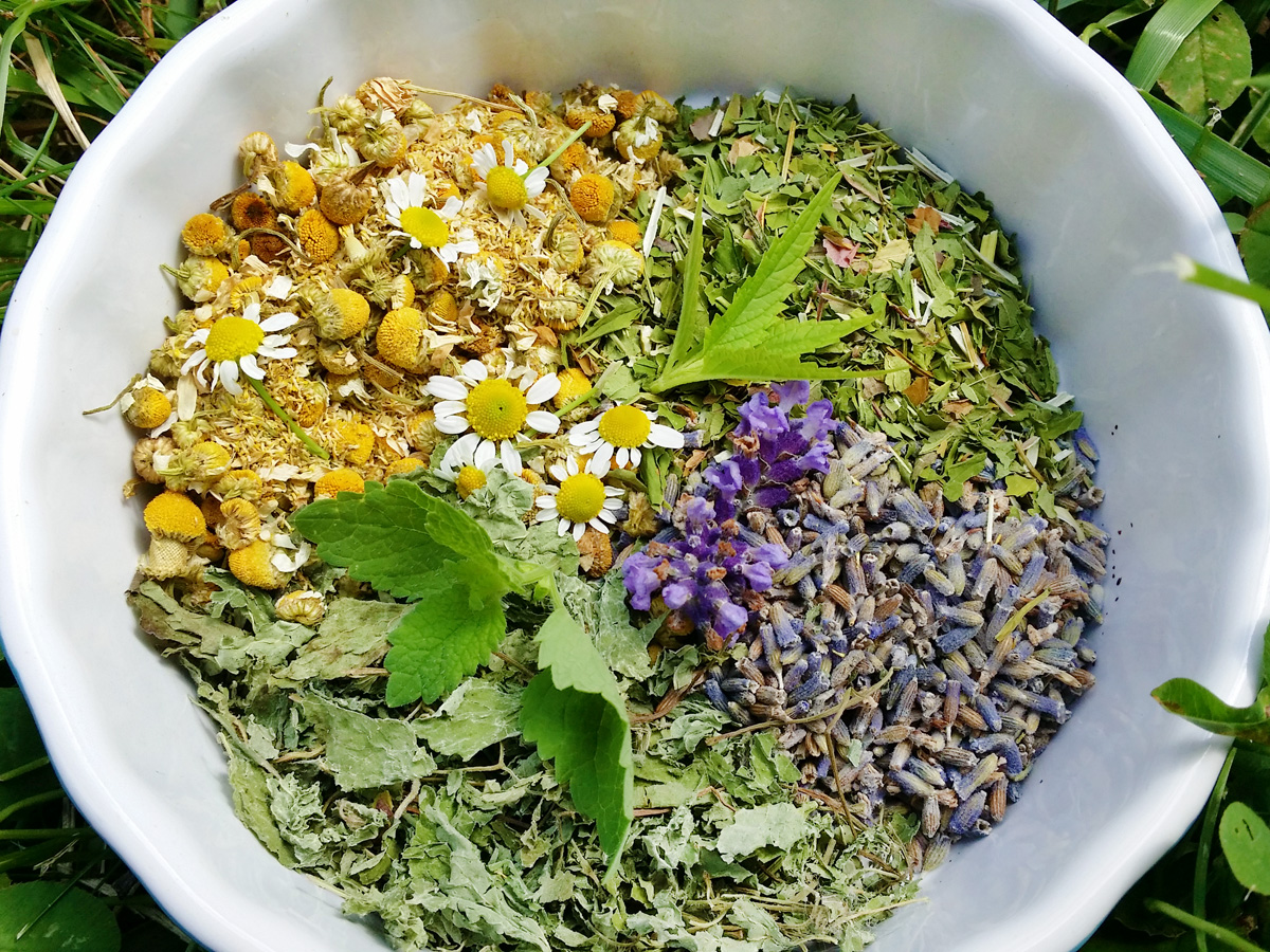 Overhead view of a white bowl full of herbal ingredients such as chamomile, lavender, and mint.