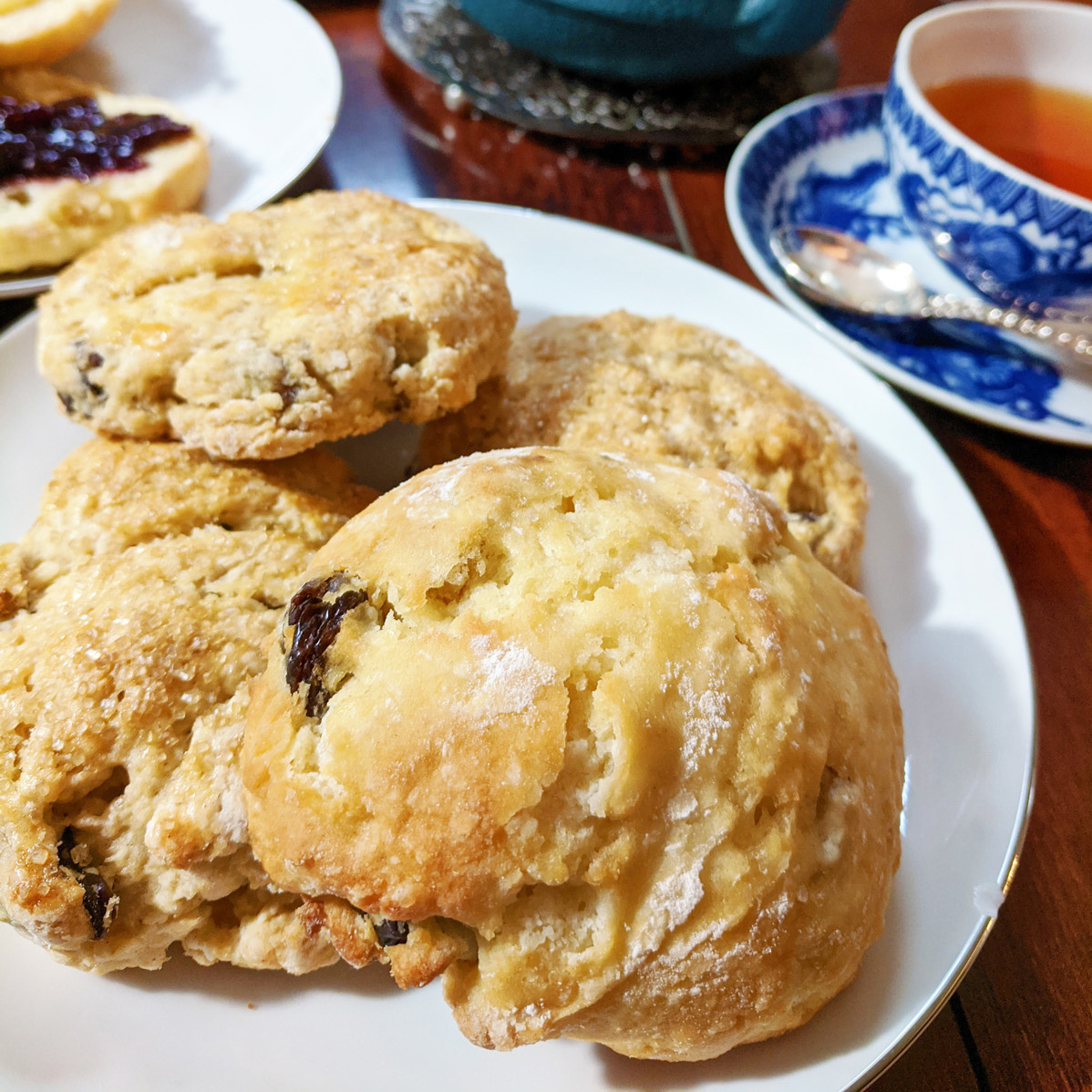 Closeup of a plate full of raisin scones on a wooden table. A white and blue teacup and saucer full of tea can be seen in the background.