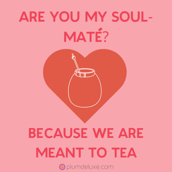 "The outline of a maté gourd is in the center of a red heart on a pink background. The words say, ""Are you my soul-maté? Because we are meant to tea."""